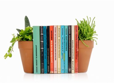 Plant Pot Living Bookends 花盆书挡